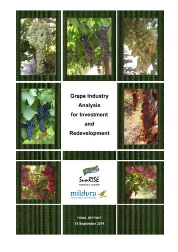 Grape Industry Analysis for Investment and Redevelopment