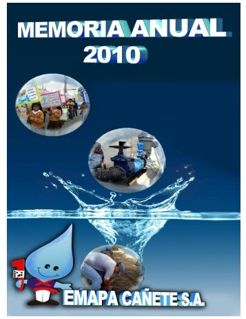 Memoria Anual 2010 - Emapa Cañete SA