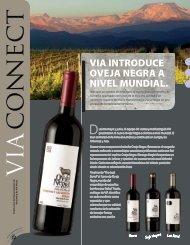 VIA CONNECT 02s - Via Wines