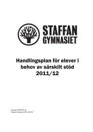 Handlingsplan för elever i behov av särskilt stöd - Söderhamns ...