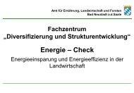 Energie – Check - Amt für Ernährung, Landwirtschaft und Forsten ...