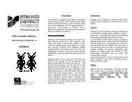 Pest Control Service Earwigs leaflet - Stroud District Council