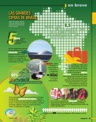 LAS GRANDES CIFRAS DE BRASIL - Revista Perspectiva