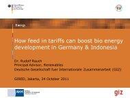 How feed in tariffs can boost bio energy - AHKs