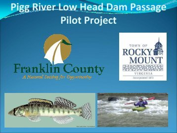 Pigg River Low Head Dam Passage Pilot Project - Town of Rocky ...
