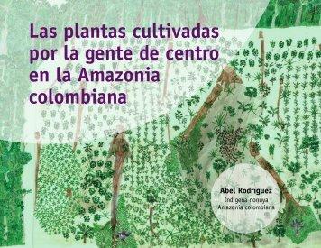 Las plantas cultivadas por la gente de centro en la Amazonia ...