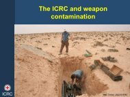 Overview of the ICRC approach to weapon contamination