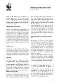Der Hellrote Ara (Ara macao ) - Seite 2