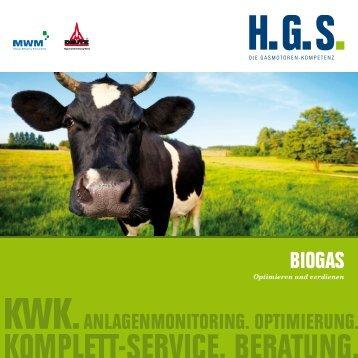 BIOGAS - Henkelhausen GmbH & Co. KG
