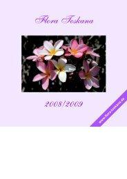 passende Pflanzgefäße für Ihre Zitruspflanzen finden ... - Flora toskana
