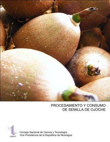 PROCESAMIENTO Y CONSUMO DE SEMILLA ... - Ideassonline.org