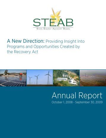 FY 2009 Annual Report - steab