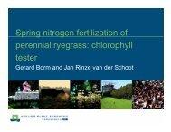 Spring nitrogen fertilization of perennial ryegrass: chlorophyll tester