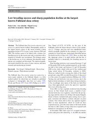 Low breeding success and sharp population decline at the largest ...