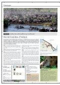 Tanzanie - Terre d'Afrique - Page 2