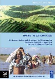 Making the economic case - UNDP in Guyana
