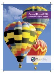 Annual Report 2009 - Meezan Bank