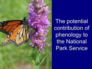 The potential contribution of phenology to the National Park Service