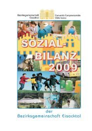 Sozialbilanz 2009 - Bezirksgemeinschaft Eisacktal