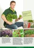 nyttoväxter prydnadsväxter gräsmatta jordförbättring - Biolan - Page 7