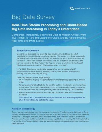 Big Data Survey - GigaSpaces