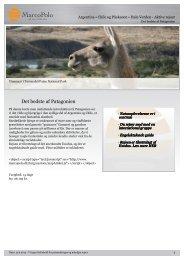 Det bedste af Patagonien - MarcoPolo