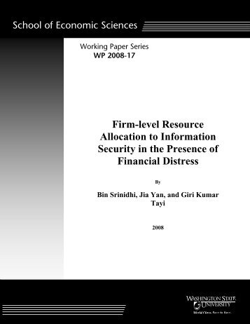 Firm-level Resource Allocation to Information Security in the ...