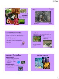 Ch. 26-34-Animal Notes to Print
