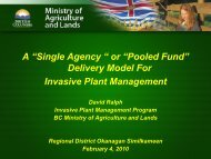 """A """"Single Agency """" or """"Pooled Fund"""" Delivery ... - Rdosmaps.bc.ca"""