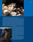 Revista: Chispas No.13 - conafe.edu.mx - Page 7
