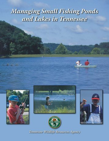 Managing Small Fishing Ponds and Lakes in Tennessee