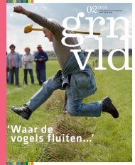 magazine - VBP