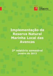2.º Relatório semestral - Janeiro 2013 - ZIBA - Câmara Municipal de ...