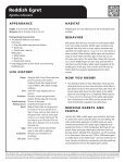 Reddish Egret - The State of Water - Page 2