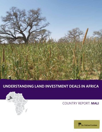 UNDERSTANDING LAND INVESTMENT DEALS IN ... - All Africa