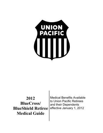 Medical Bluecross Blueshield International Claim Form