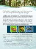 Pago por Servicios Ambientales (PSA) - Page 3