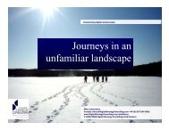 Journeys in an unfamiliar landscape - Digital Strategy Consulting