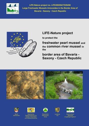 Layman report - Europa