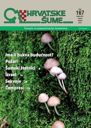 Ima li bukva budućnost? - Hrvatske šume