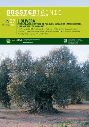 L'olivera - RuralCat
