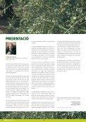 L'olivera - RuralCat - Page 2