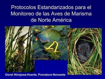 Protocolos Estandarizados para el Monitoreo de las Aves