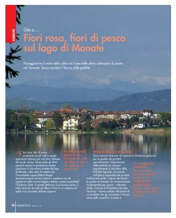 Gita a pag 58_61.pdf - Varesefocus