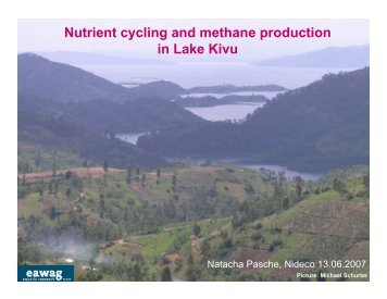 Nutrient cycling and methane production in Lake Kivu - ETH - North ...