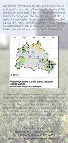 Der Berliner Florenatlas - Botanischer Verein von Berlin und ... - Page 2