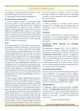 CONGLOMERADO FINANCEIRO - Banco Alfa - Page 4
