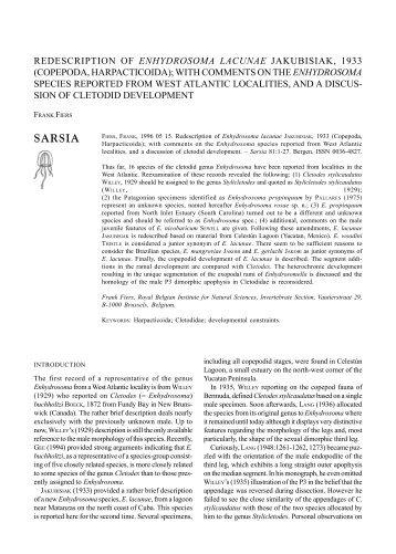 REDESCRIPTION OF ENHYDROSOMA LACUNAE JAKUBISIAK ...