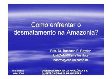O Desmatamento na Amazônia - Sober