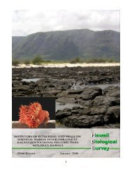 download their report click here - University of Hawaii at Manoa ...